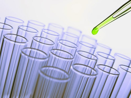 cellules-souches-follicule-pileux