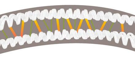 keratine-ponts-disulfures