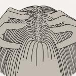 massage-quotidien-crepu
